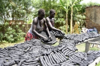 Environmental Sustainability (Women in Campswahili drying briquettes)